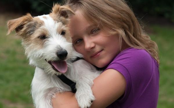 502114 Crianças com alergia devem evitar o contato com animais. Alergia em crianças: como prevenir