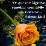 506222 frases evangelicas para facebook fotos 37 150x150 Frases evangélicas para facebook: fotos