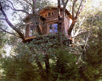 Casa na rvore para crian as modelos for Hotel con casas colgadas de los arboles