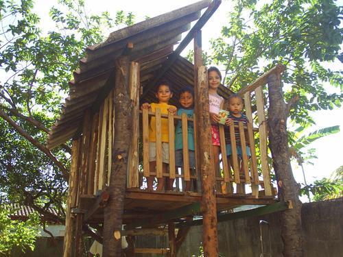 508318 casas na arvore1 Casa na árvore para crianças, modelos