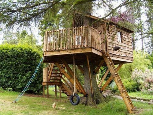 508528 casa da arvore fotos 1 Casa da árvore: fotos
