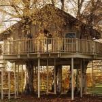 508528 casa da arvore fotos 150x150 Casa da árvore: fotos