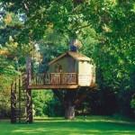 508528 casa da arvore fotos 3 150x150 Casa da árvore: fotos