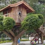 508528 casa da arvore fotos 30 150x150 Casa da árvore: fotos