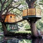 508528 casa da arvore fotos 7 150x150 Casa da árvore: fotos