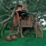 508528 casa da arvore fotos 9 150x150 Casa da árvore: fotos