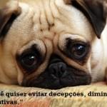 509121 Frases e imagens sobre decepção para facebook 9 150x150 Frases e imagens sobre decepção para Facebook