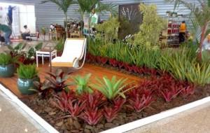 Jardim tropical em casa: como montar