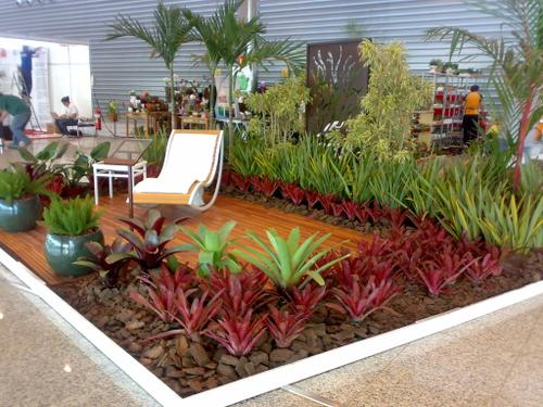 510018 Os jardins tropicais podem ser montados em vários locais da casa Fotodivulgação. Jardim tropical em casa: como montar