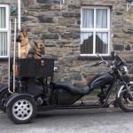 512427 motos estranhas e engracadas fotos 37 150x150 Motos estranhas e engraçadas: fotos