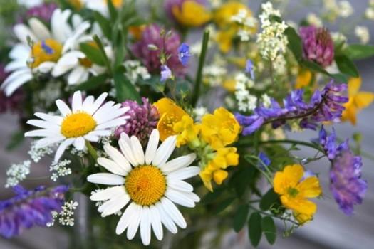 Casamento decorado com flores do campo dicas, fotos