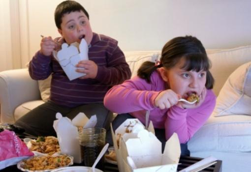 518809 Crianças obesas apresentam menos sensibilidade aos sabores dos alimentos Crianças obesas apresentam menos sensibilidade aos sabores dos alimentos
