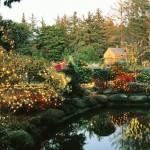 528520 decoracao de jardim para natal fotos dicas 9 150x150 Decoração de jardim para natal: fotos, dicas
