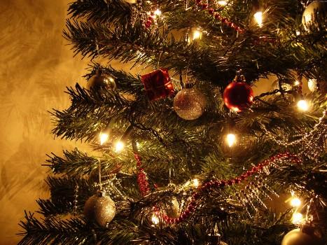 530360 Árvore de Natal 2012 preços onde comprar 1 Árvore de Natal 2012, preços, onde comprar