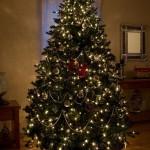 534378 arvores de natal criativas fotos 1 150x150 Árvores de Natal criativas: fotos