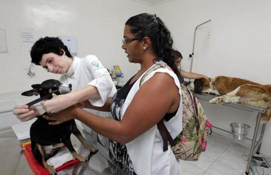 535025 Como marcar consulta no hospital público veterinário SP 1 Como marcar consulta no hospital público veterinário SP