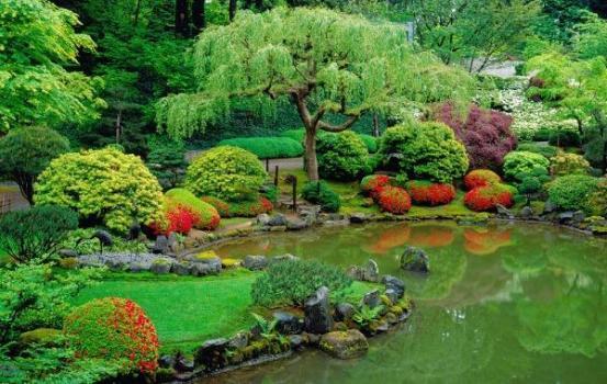 Lago artificial no jardim dicas como fazer for Koi ponds near me