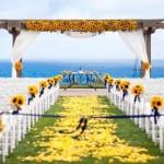 547193 Decoração de casamento com girassol 150x150 Decoração de casamento com girassol