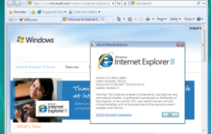 Internet Explorer monitora movimentos do mouse