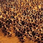 554577 Carandiru Carandiru 2003. 150x150 Filmes baseados em fatos reais: fotos