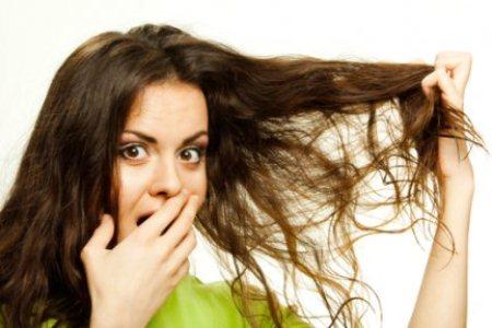 558616 Produtos para tratar cabelo ressecado.3 Produtos para tratar cabelo ressecado