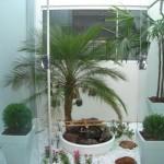 569278 Os jardins de inverno podem ser feitos em apartamentos. Foto divulgação 150x150 Jardim de inverno em apartamento: fotos