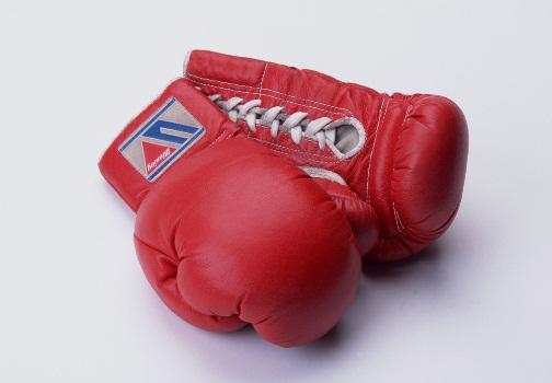 575140 Aulas de boxe online 2 Aulas de boxe online
