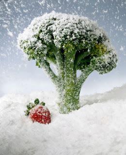 587478 Alimentos que não podem ser congelados quais são 1 Alimentos que não podem ser congelados: quais são