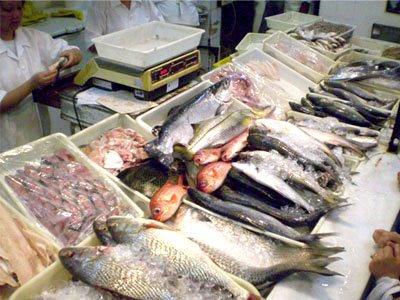 589613 Peixe como escolher cuidados ao comprar 2 Peixe: como escolher, cuidados ao comprar