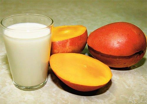 595660 A manga com leite faz bem para à saúde. Foto divulgação Manga com leite faz bem à saúde