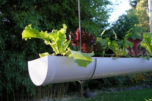 596454 Jardim Vertical com PVC Como fazer 05 Jardim Vertical com PVC: Como fazer