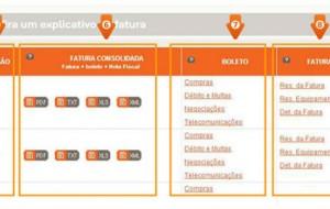 Fatura Nextel Online 2