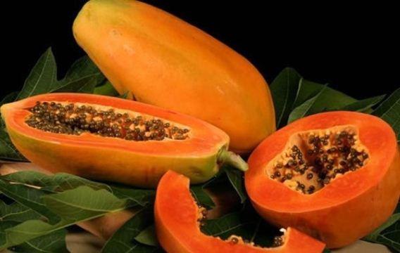 617320 O chá de sementes de mamão é muito eficaz no tratamento dos vermes. Foto divulgação Tratamento caseiro para Verme