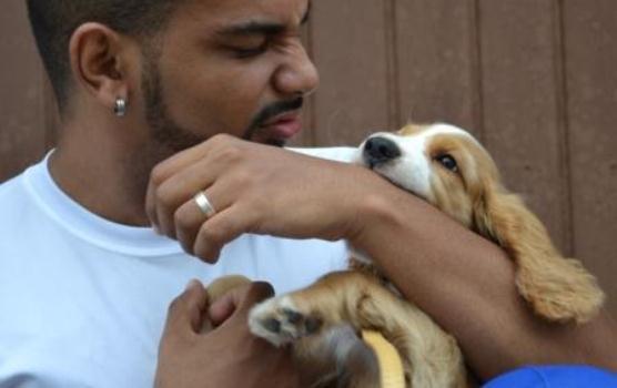 631101 As mordidas de cachorros devem ser tratadas com cuidado. Foto divulgação Mordida de cachorro: o que fazer