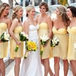 636443 Damas de honra adultas dicas de vestidos fotos 1 150x150 Damas de honra adultas: dicas de vestidos, fotos