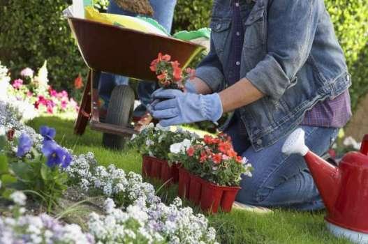 64361 Curso de Jardinagem Gratuito no RJ – SENAC 2 Curso de Jardinagem no RJ – SENAC