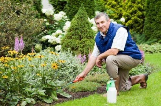 64361 Curso de Jardinagem Gratuito no RJ – SENAC 3 Curso de Jardinagem no RJ – SENAC