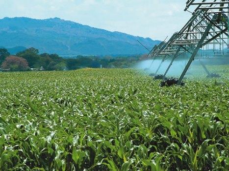 650694 Saiba mais sobre a água em pó grande promessa contra seca Saiba mais sobre a água em pó, grande promessa contra seca