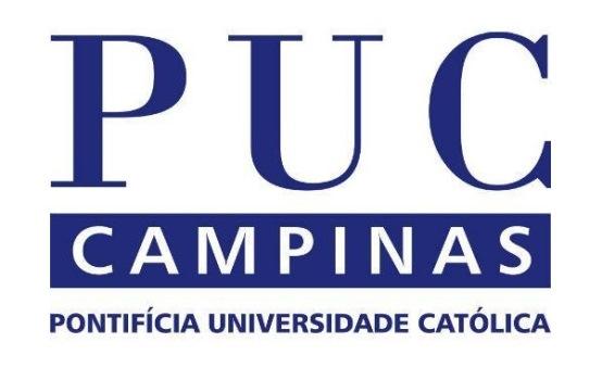 654555 Vestibular PUC Campinas 2014 inscrições cursos 1 Vestibular PUC Campinas 2014: inscrições, cursos