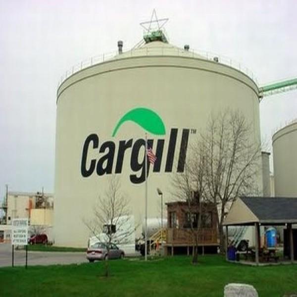 654910 programa de trainee cargill 2014 1 600x600 Programa de trainee Cargill 2014