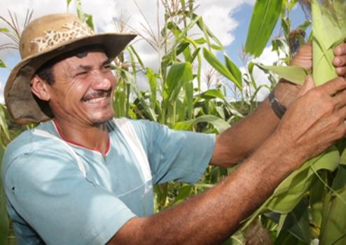 656665 Pronatec Campo cursos gratuitos para produtores rurais 1 Pronatec Campo: cursos gratuitos para produtores rurais