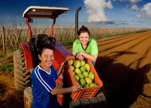 656665 Pronatec Campo cursos gratuitos para produtores rurais 2 Pronatec Campo: cursos gratuitos para produtores rurais