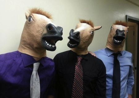 Máscara de cabeça de cavalo: preços, onde comprar