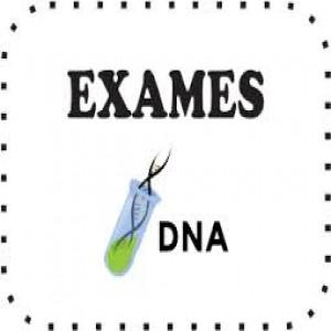 67105 dna1 300x300 Exame De DNA Gratuito   Teste De Paternidade