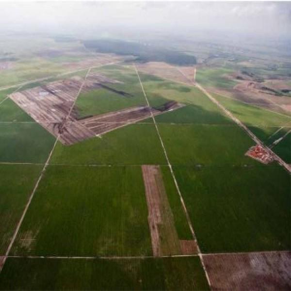 676289 vagas de emprego na fabrica da fiat em pernambuco 600x600 Vagas de emprego na fábrica da Fiat em Pernambuco