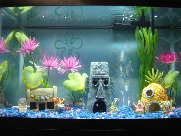Dicas para usar aquário na decoração da casa