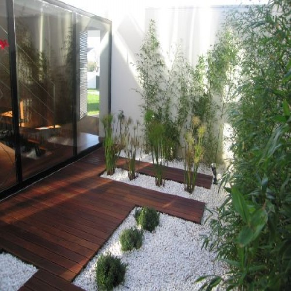 ... plantas para jardim de inverno 600x600 Plantas para Jardim de Inverno