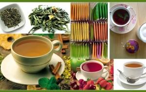 Benefícios do chá quente para nosso organismo