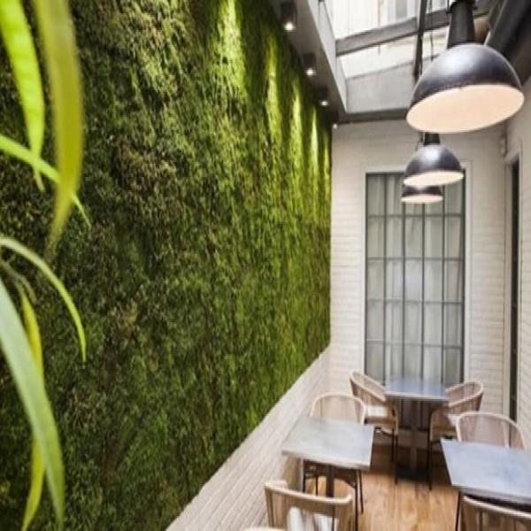 Como fazer um jardim vertical passo a passo for Architecture vegetale