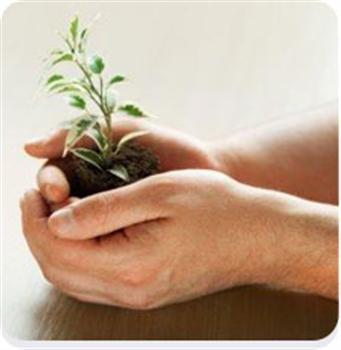75519 Pós Graduação em Educação Ambiental Gratuita RS Pós Graduação em Educação Ambiental Gratuita RS